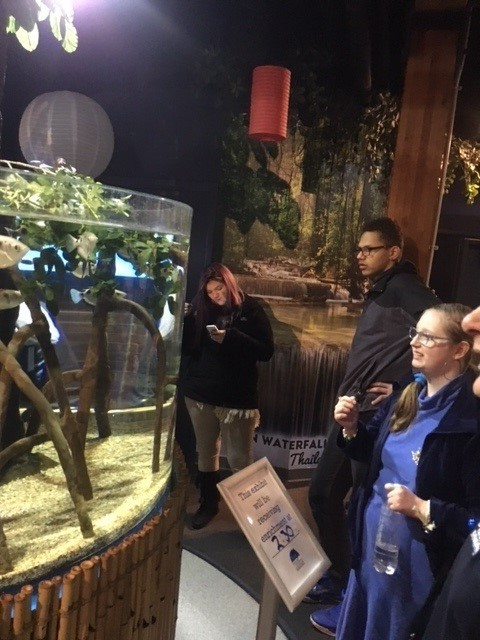 3 LEAD students viewing the natural aquarium display